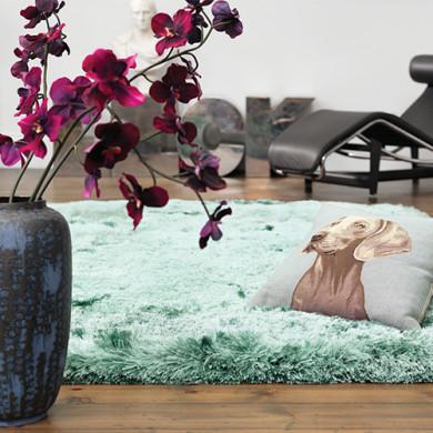 Asiatic szőnyegek